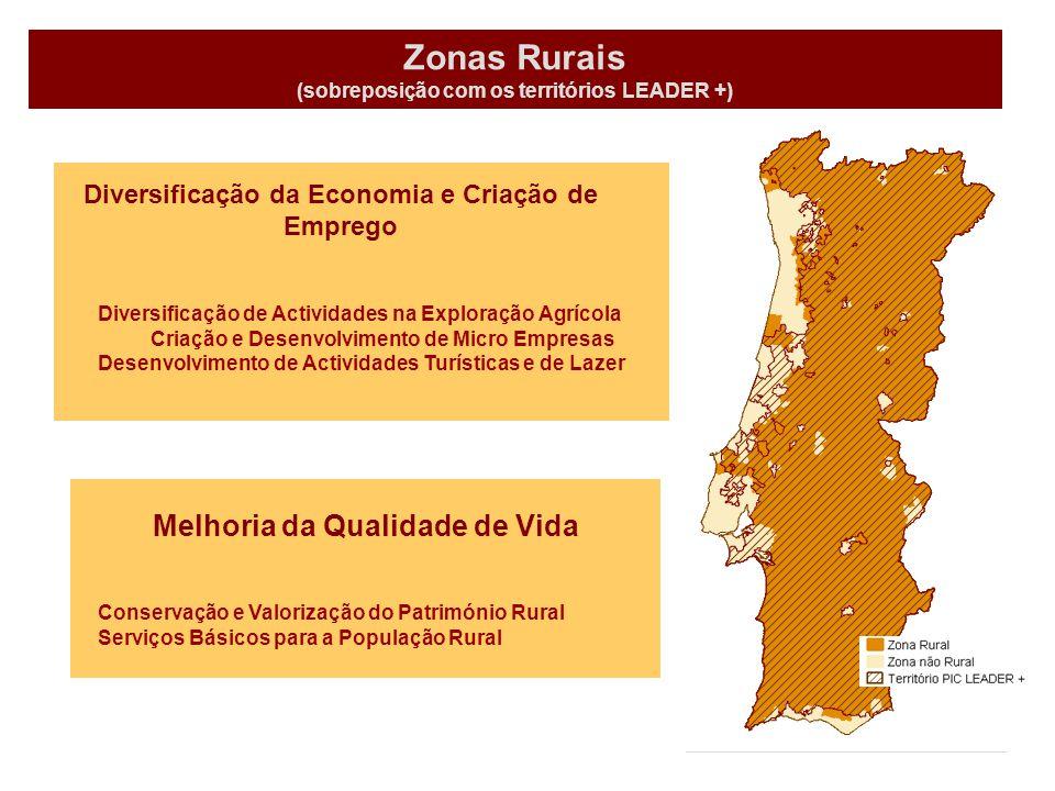 Zonas Rurais (sobreposição com os territórios LEADER +) Melhoria da Qualidade de Vida Diversificação de Actividades na Exploração Agrícola Criação e Desenvolvimento de Micro Empresas Desenvolvimento de Actividades Turísticas e de Lazer Conservação e Valorização do Património Rural Serviços Básicos para a População Rural Diversificação da Economia e Criação de Emprego