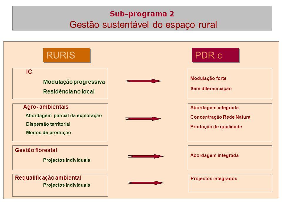 LEADER+ PDRc Programa autónomo Abordagem de gestão Estratégias locais autónomas Programa alternativo Estratégias locais integradas numa estratégia regional e nacional Balcão universal Predomínio da iniciativa pública Sistema de incentivos à Economia Sub-programa 3 Dinamização das zonas rurais