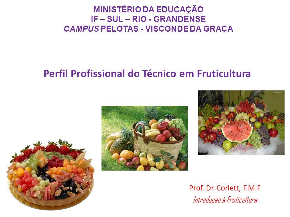 Perfil Profissional do Técnico em Fruticultura MINISTÉRIO DA EDUCAÇÃO IF – SUL – RIO - GRANDENSE CAMPUS PELOTAS - VISCONDE DA GRAÇA Prof.