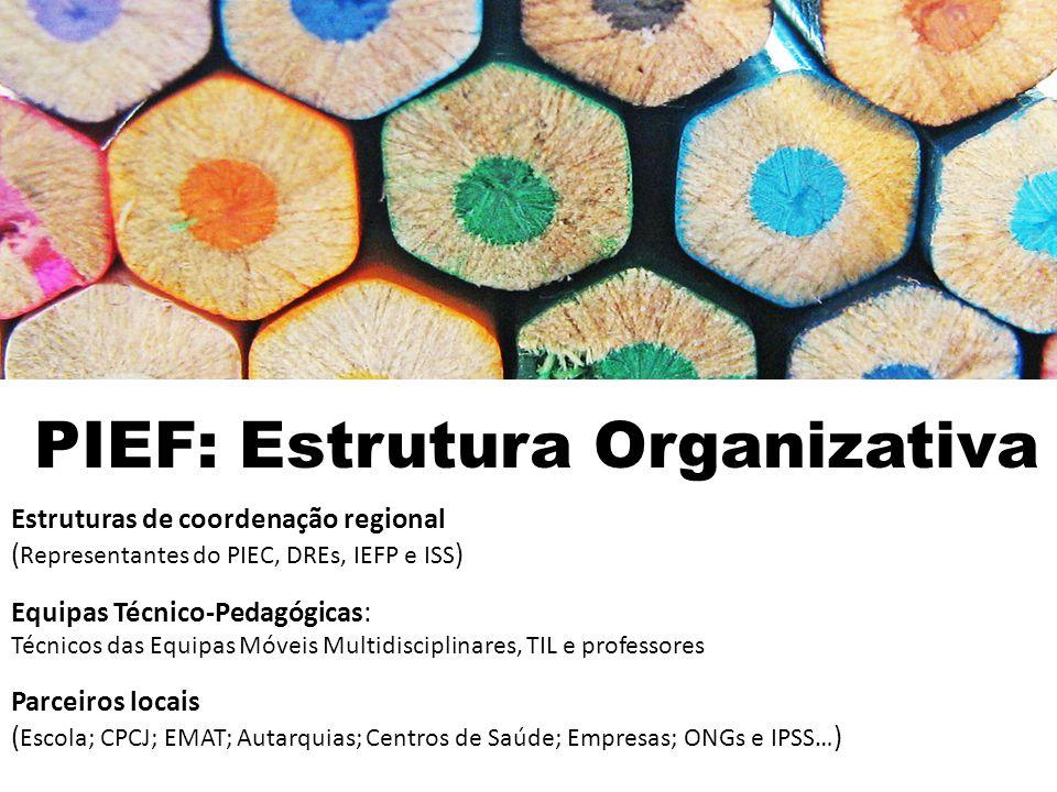 PIEF: Estrutura Organizativa Estruturas de coordenação regional ( Representantes do PIEC, DREs, IEFP e ISS ) Equipas Técnico-Pedagógicas: Técnicos das Equipas Móveis Multidisciplinares, TIL e professores Parceiros locais ( Escola; CPCJ; EMAT; Autarquias; Centros de Saúde; Empresas; ONGs e IPSS… )
