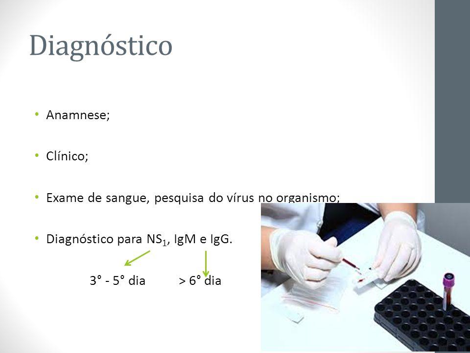 Diagnóstico Anamnese; Clínico; Exame de sangue, pesquisa do vírus no organismo; Diagnóstico para NS 1, IgM e IgG. 3° - 5° dia > 6° dia