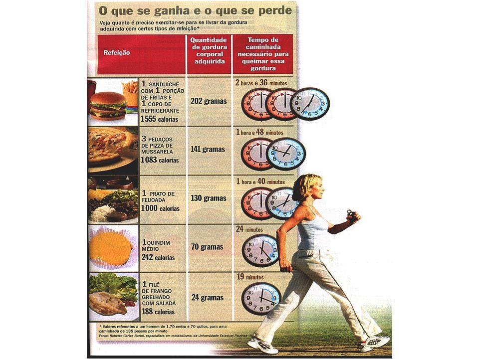 professoracamila@iffarroupilha.edu.br Hipertensão Diabetes Aumento do colesterol Problemas articulares e de coluna Depressão