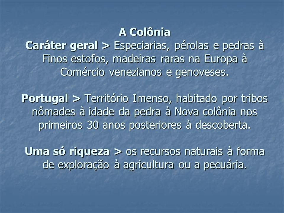 Organização do Estatuto Nacional: assembléia constituinte de 1823 >Período de transição; >Tradução do equilíbrio político de uma sociedade; >Independencia,simples transferida política de poderes da metrópole para o novo governo brasileiro.