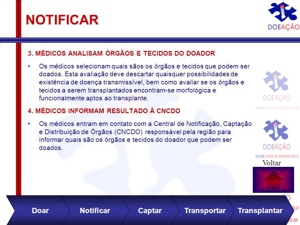 Divulgação no site 0800 282 81 31 NOTIFICAR 3.