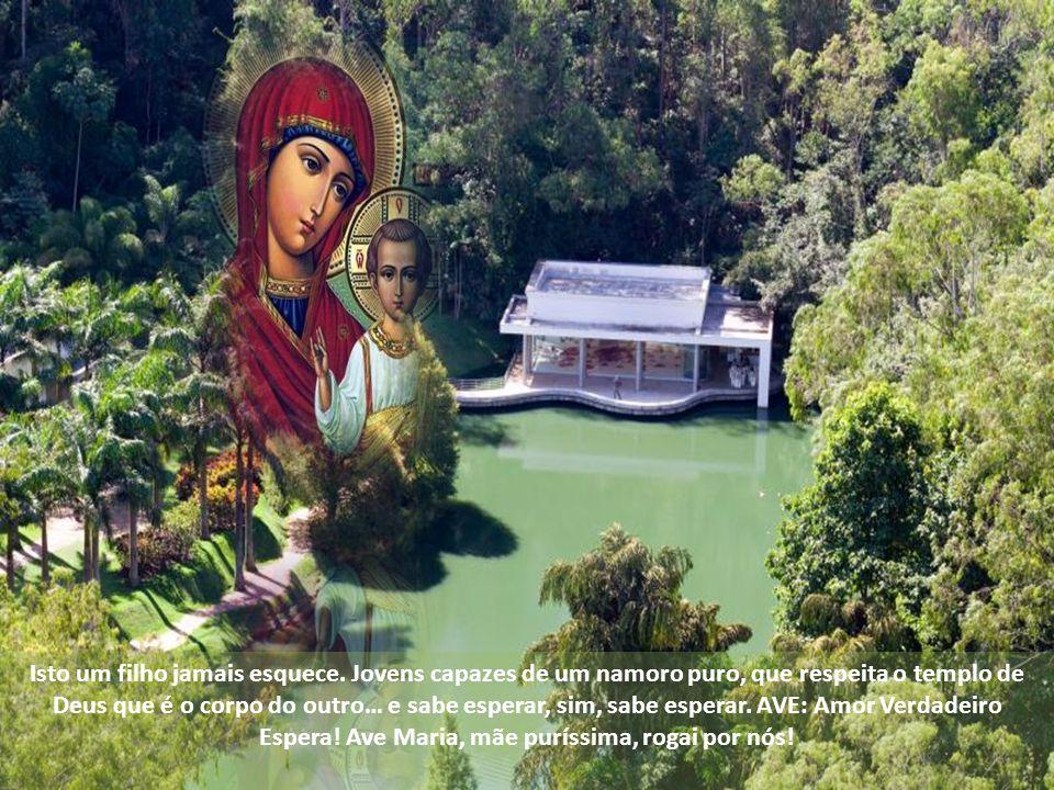 Elas nos precederão no Reino, advertiu Jesus. A pureza é uma virtude atual. Precisamos políticos puros, sem corrupção. Precisamos padres e religiosos