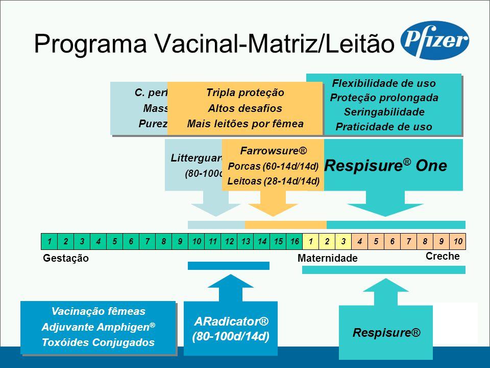 Creche Programa Vacinal-Matriz/Leitão 12345678910111213141516123456 Gestação 78910 Maternidade Respisure ® One Flexibilidade de uso Proteção prolongada Seringabilidade Praticidade de uso Flexibilidade de uso Proteção prolongada Seringabilidade Praticidade de uso Litterguard® LT-C (80-100d/14d) C.