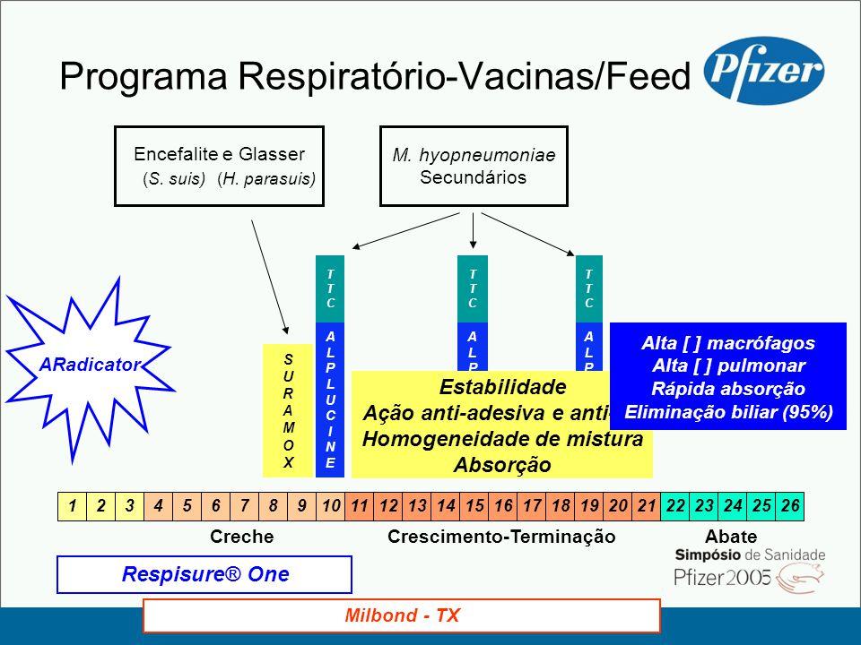 Programa Respiratório-Vacinas/Feed ARadicator Milbond - TX CrecheCrescimento-Terminação 1234567891011121314151617181920212223242526 Abate Encefalite e