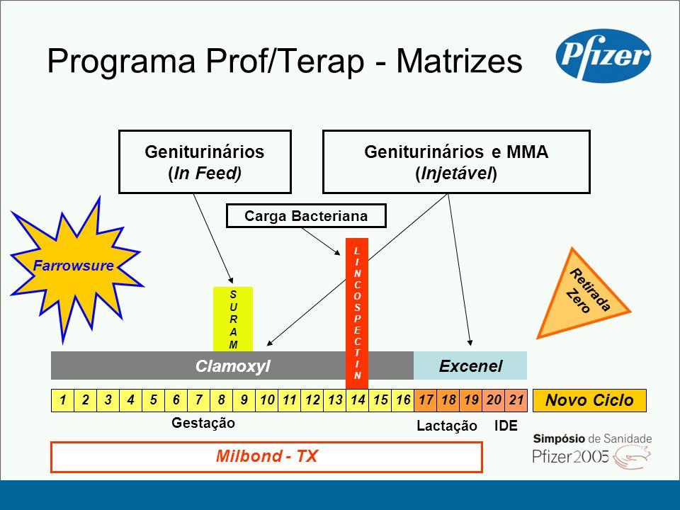 Programa Prof/Terap - Matrizes Gestação Lactação 123456789101112131415161718192021 IDE Novo Ciclo Farrowsure Geniturinários e MMA (Injetável) SURAMOXSURAMOX Geniturinários (In Feed) ExcenelClamoxyl Milbond - TX Retirada Zero LINCOSPECTINLINCOSPECTIN Carga Bacteriana