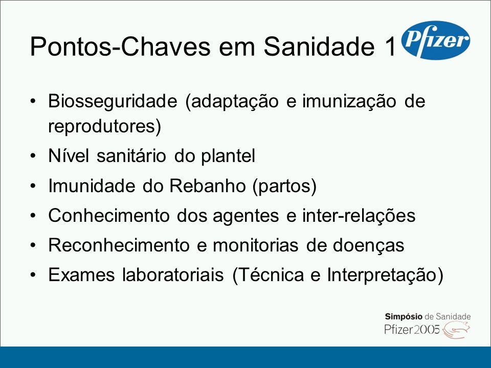Pontos-Chaves em Sanidade 1 Biosseguridade (adaptação e imunização de reprodutores) Nível sanitário do plantel Imunidade do Rebanho (partos) Conhecime