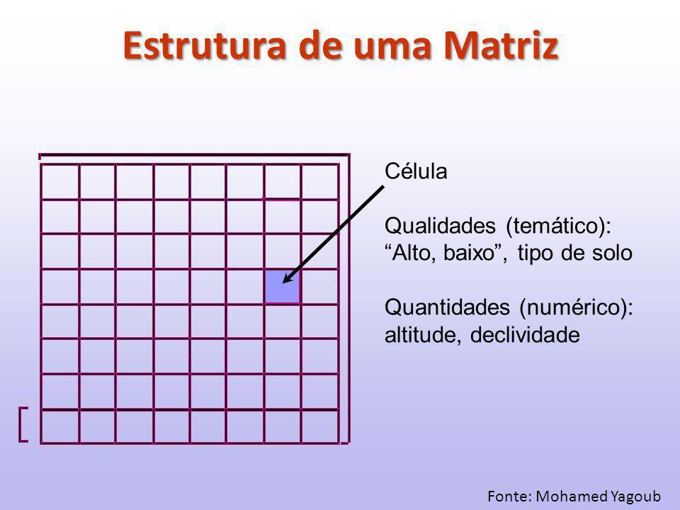 Fonte: Mohamed Yagoub Célula Qualidades (temático): Alto, baixo , tipo de solo Quantidades (numérico): altitude, declividade Estrutura de uma Matriz