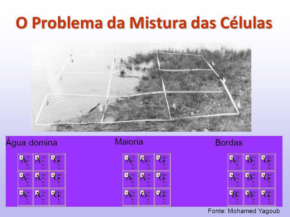 Fonte: Mohamed Yagoub O Problema da Mistura das Células