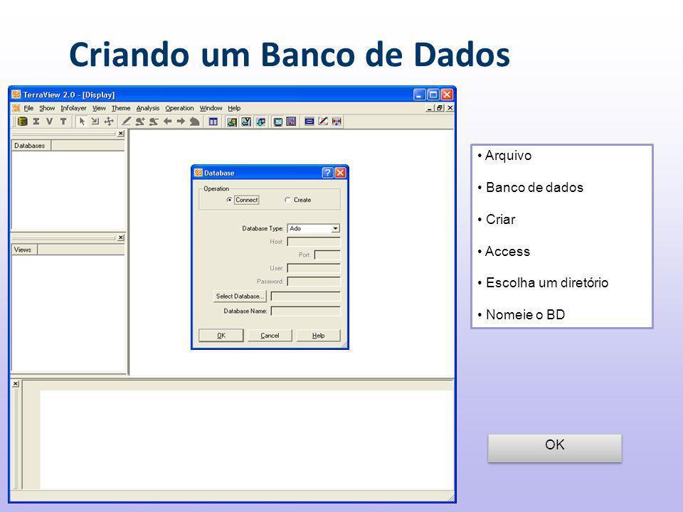 Criando um Banco de Dados Arquivo Banco de dados Criar Access Escolha um diretório Nomeie o BD OK