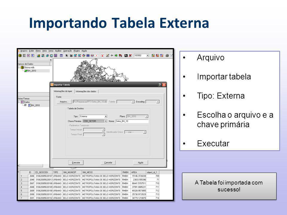Importando Tabela Externa Arquivo Importar tabela Tipo: Externa Escolha o arquivo e a chave primária Executar A Tabela foi importada com sucesso!