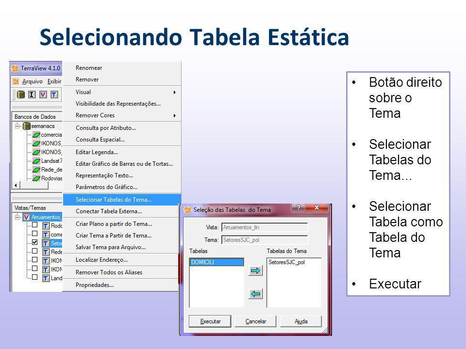 Selecionando Tabela Estática Botão direito sobre o Tema Selecionar Tabelas do Tema...