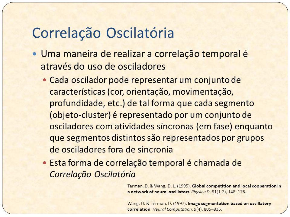 Correlação Oscilatória Uma maneira de realizar a correlação temporal é através do uso de osciladores Cada oscilador pode representar um conjunto de características (cor, orientação, movimentação, profundidade, etc.) de tal forma que cada segmento (objeto-cluster) é representado por um conjunto de osciladores com atividades síncronas (em fase) enquanto que segmentos distintos são representados por grupos de osciladores fora de sincronia Esta forma de correlação temporal é chamada de Correlação Oscilatória Terman, D.