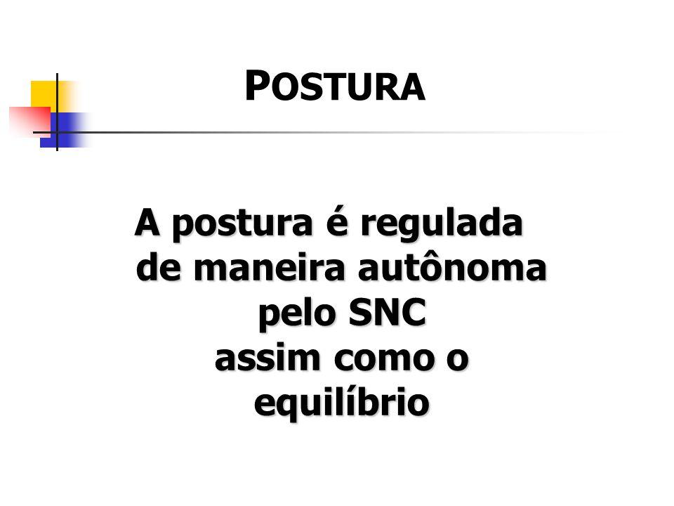 A postura é regulada de maneira autônoma pelo SNC assim como o equilíbrio P OSTURA