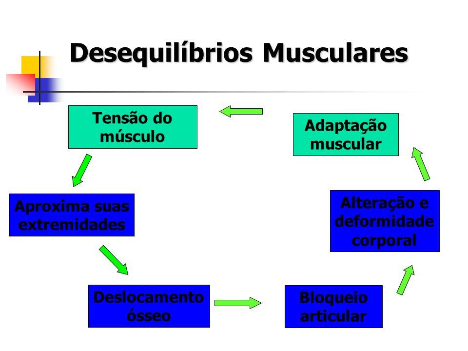 Aproxima suas extremidades Deslocamento ósseo Bloqueio articular Alteração e deformidade corporal Tensão do músculo Adaptação muscular Desequilíbrios
