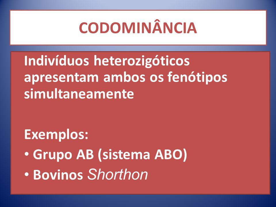 CODOMINÂNCIA Indivíduos heterozigóticos apresentam ambos os fenótipos simultaneamente Exemplos: Grupo AB (sistema ABO) Bovinos Shorthon