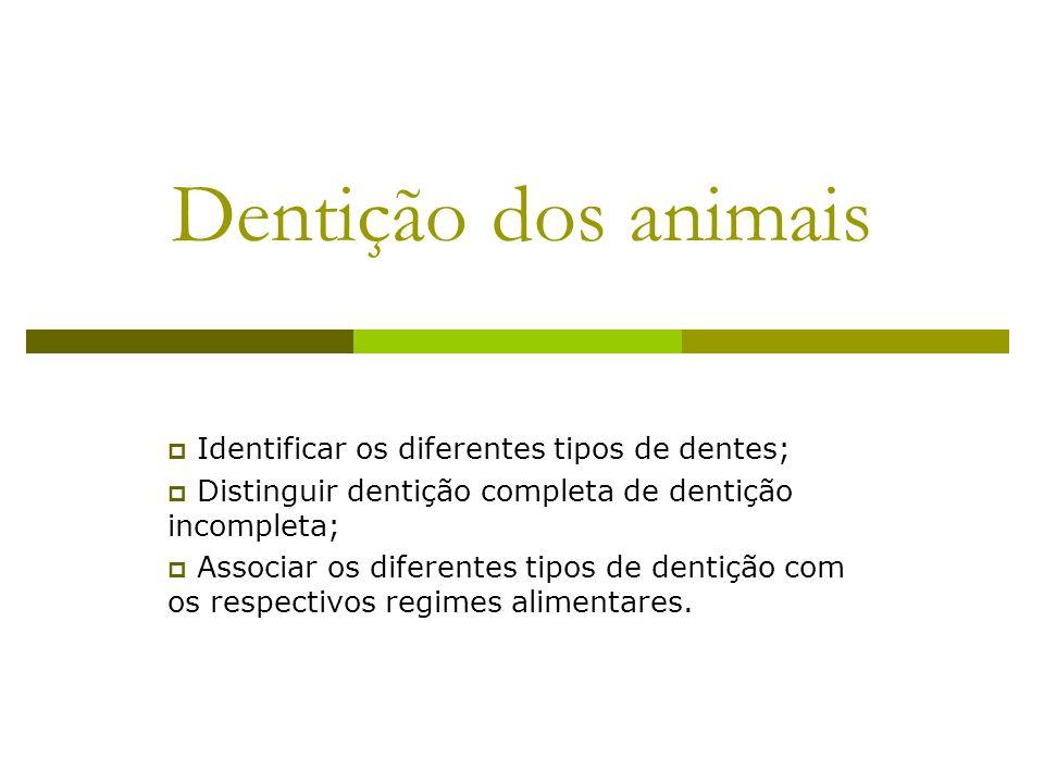 Dentição dos animais  Identificar os diferentes tipos de dentes;  Distinguir dentição completa de dentição incompleta;  Associar os diferentes tipo