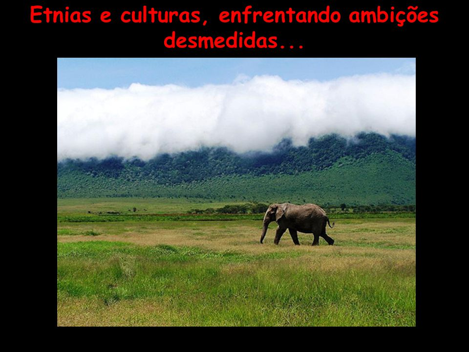 Etnias e culturas, enfrentando ambições desmedidas...