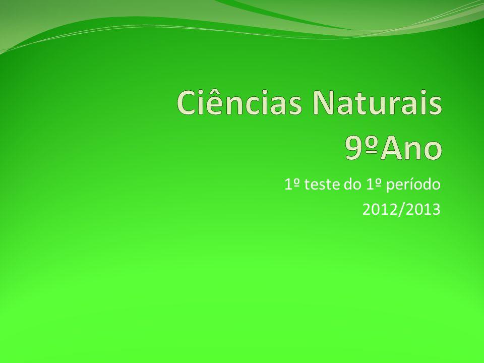 1º teste do 1º período 2012/2013