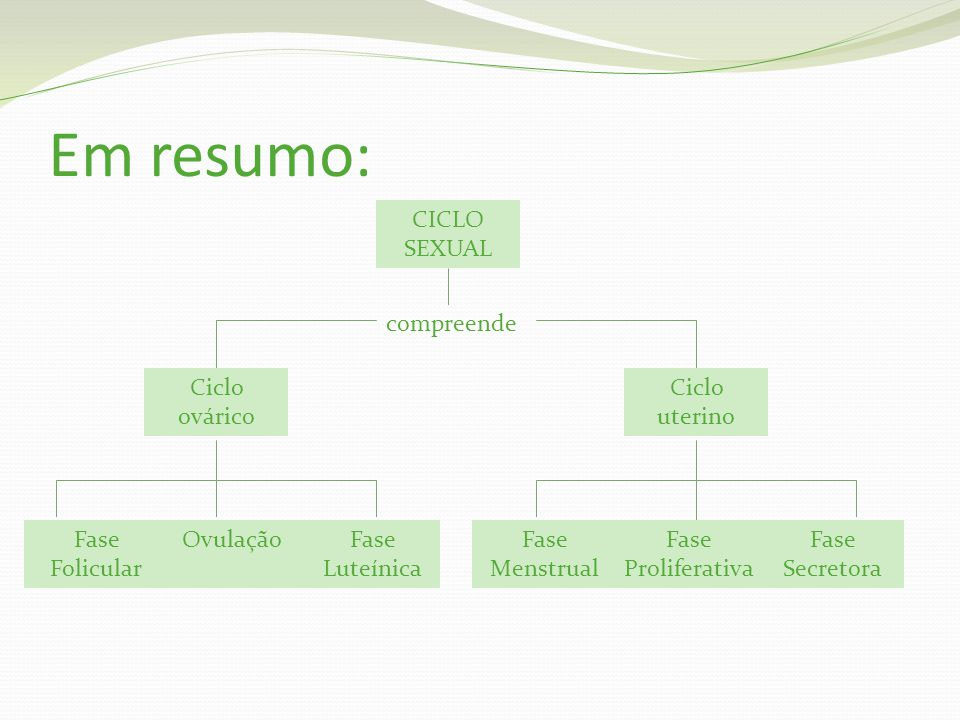 Em resumo: CICLO SEXUAL compreende Ciclo ovárico Ciclo uterino Fase Secretora Fase Proliferativa Fase Menstrual Fase Luteínica OvulaçãoFase Folicular
