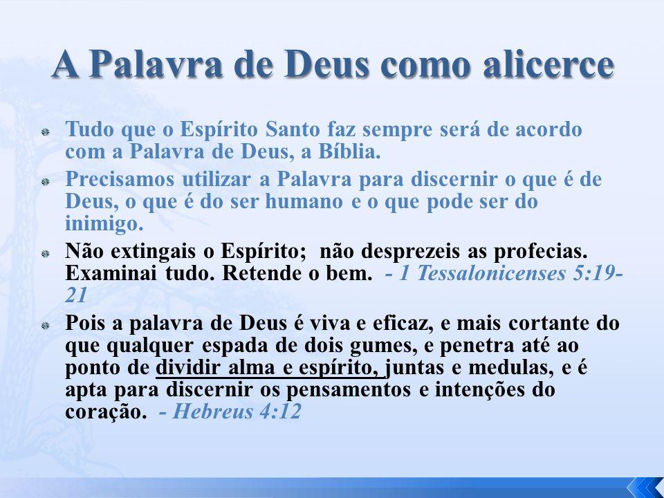  Tudo que o Espírito Santo faz sempre será de acordo com a Palavra de Deus, a Bíblia.