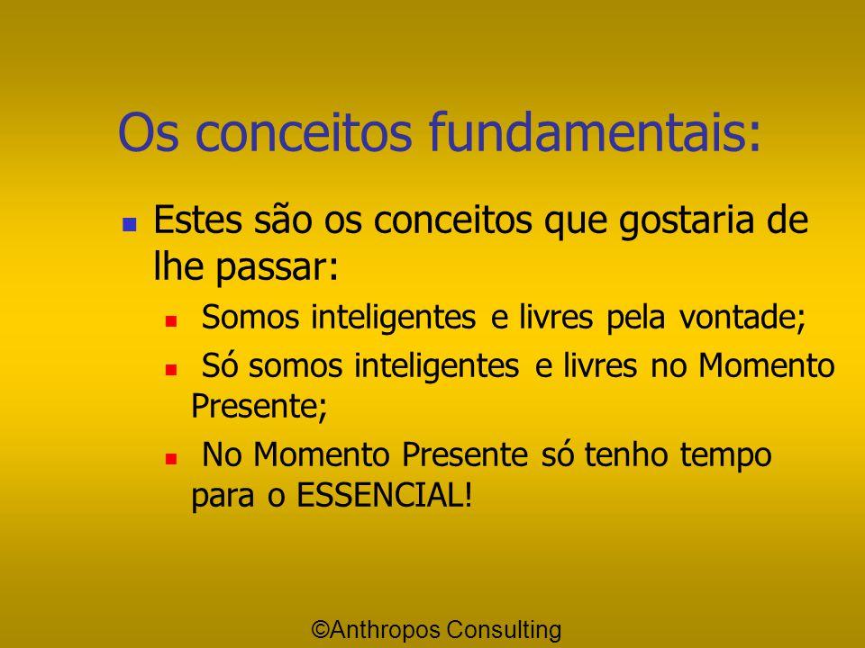 Essencial Importante Acidental ©Anthropos Consulting