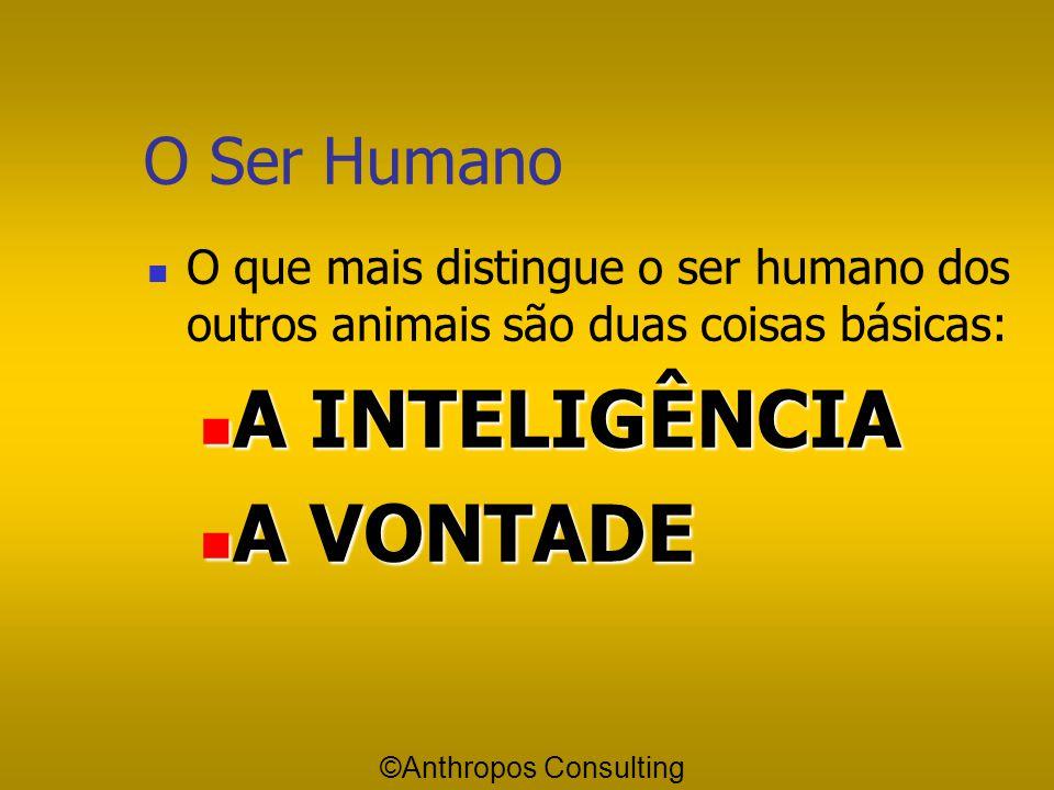 O Ser Humano O que mais distingue o ser humano dos outros animais são duas coisas básicas: A INTELIGÊNCIA A INTELIGÊNCIA A VONTADE A VONTADE ©Anthropos Consulting