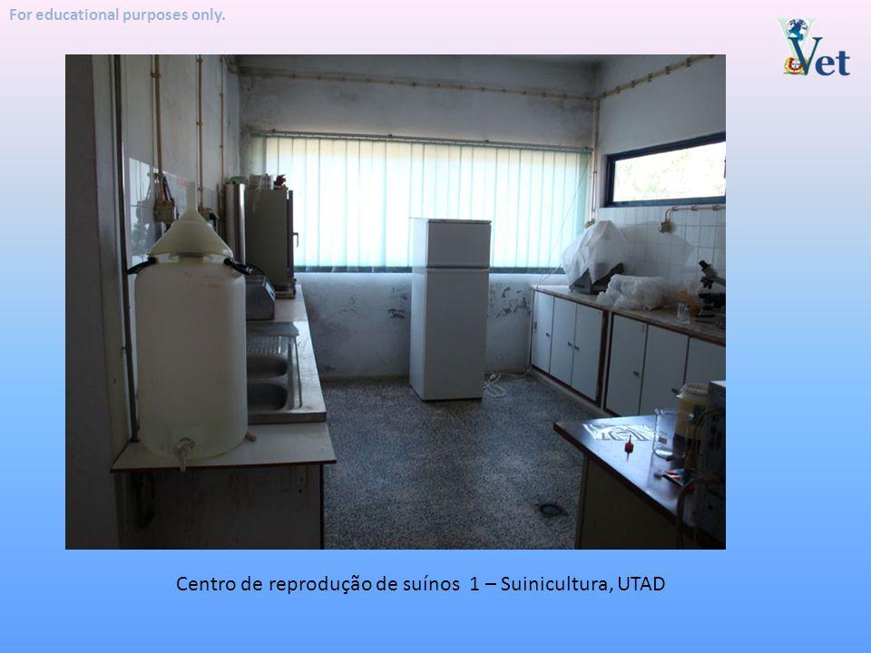 For educational purposes only. Centro de reprodução de suínos 1 – Suinicultura, UTAD