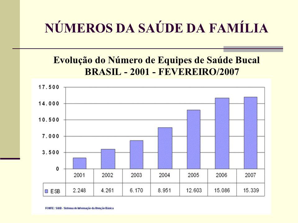 NÚMEROS DA SAÚDE DA FAMÍLIA Evolução do Número de Equipes de Saúde Bucal BRASIL - 2001 - FEVEREIRO/2007