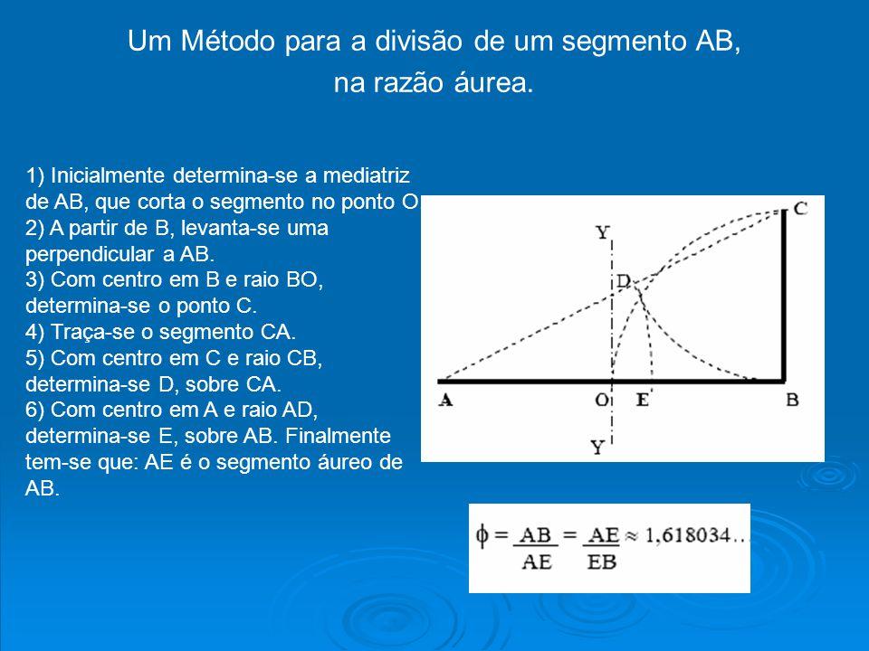 Um Método para a divisão de um segmento AB, na razão áurea. 1) Inicialmente determina-se a mediatriz de AB, que corta o segmento no ponto O. 2) A part
