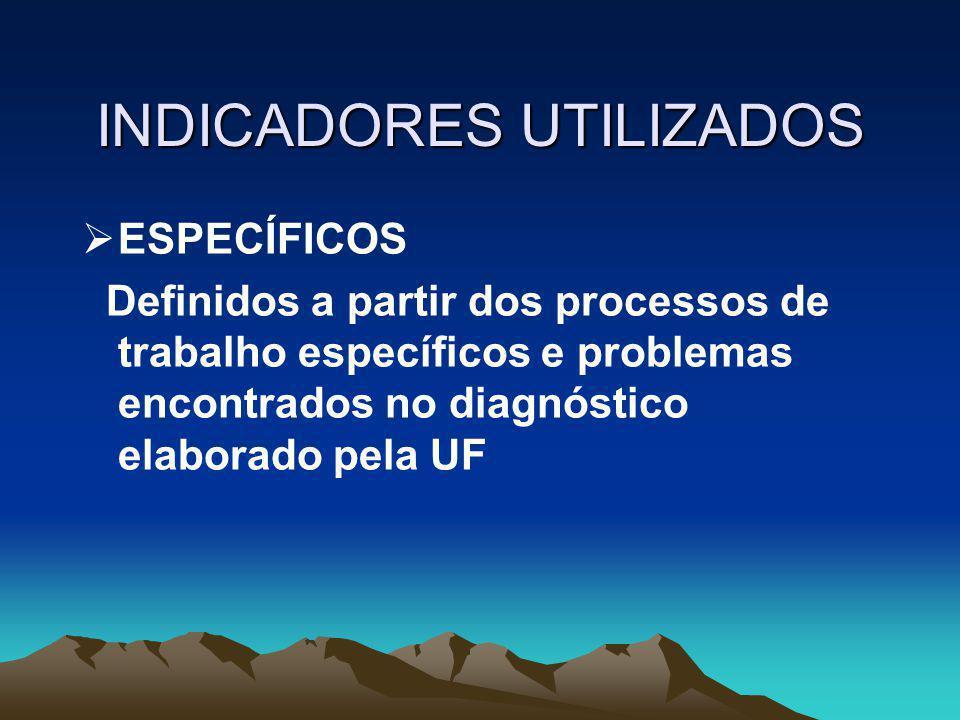 INDICADORES UTILIZADOS  GERAIS  Absenteísmo  Relação faturamento/custo para as unidades assistenciais ou redução do custo para unidades administrat