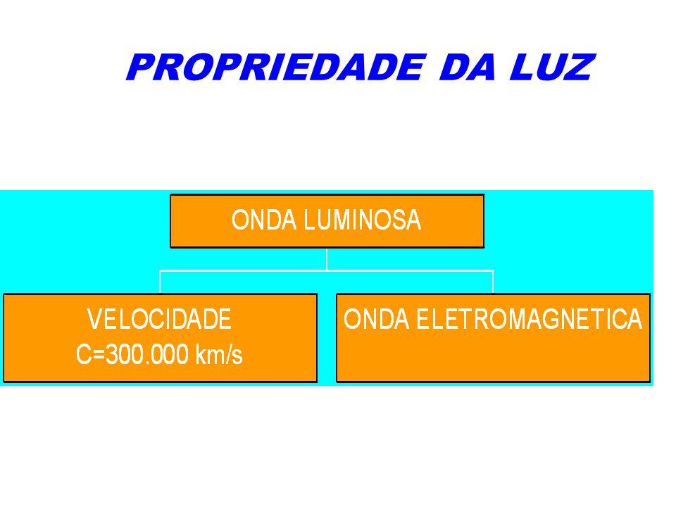 1º- Propagação retilínea da luz.