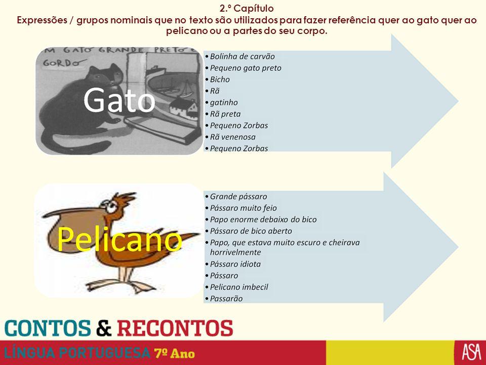 2.º Capítulo Expressões / grupos nominais que no texto são utilizados para fazer referência quer ao gato quer ao pelicano ou a partes do seu corpo.
