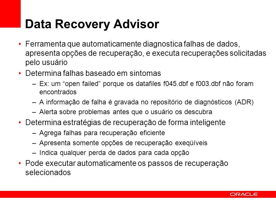 Data Recovery Advisor Ferramenta que automaticamente diagnostica falhas de dados, apresenta opções de recuperação, e executa recuperações solicitadas
