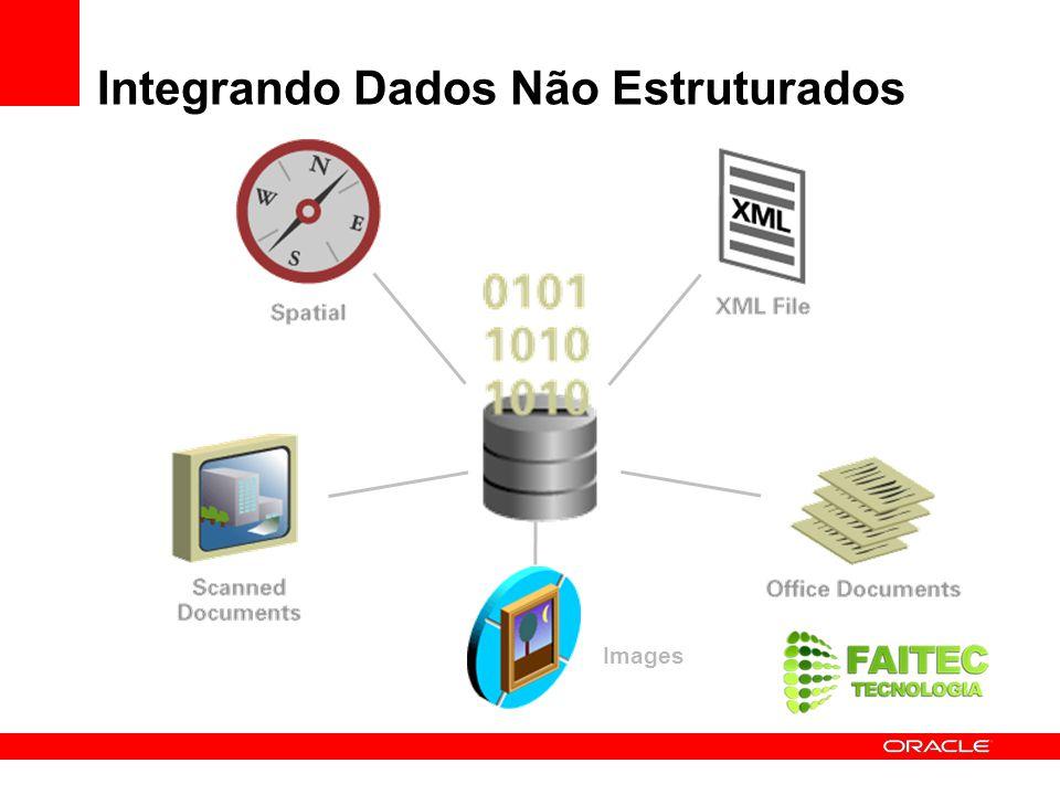 Novidade no Oracle Database 11g Novos tipos de dados críticos RFID Data Types DICOM Medical Images 3D Spatial Images