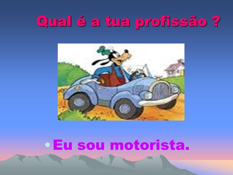 Qual é a tua profissão Eu sou motorista.