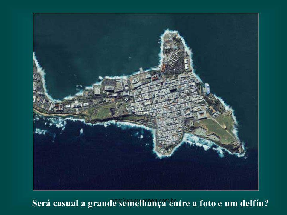 http://www.wmnett.com.br A semelhança entre esta ilha e uma peça de quebra-cabeças é tremenda.
