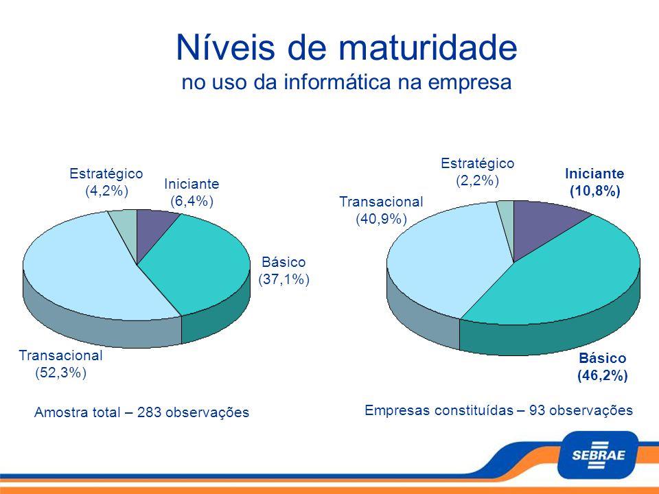 Níveis de maturidade no uso da informática na empresa Transacional (52,3%) Básico (37,1%) Iniciante (6,4%) Amostra total – 283 observações Estratégico
