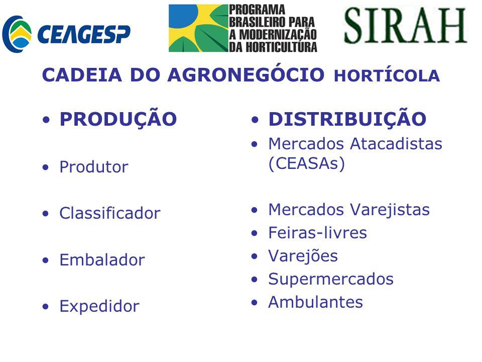 CADEIA DO AGRONEGÓCIO HORTÍCOLA PRODUÇÃO Produtor Classificador Embalador Expedidor DISTRIBUIÇÃO Mercados Atacadistas (CEASAs) Mercados Varejistas Feiras-livres Varejões Supermercados Ambulantes