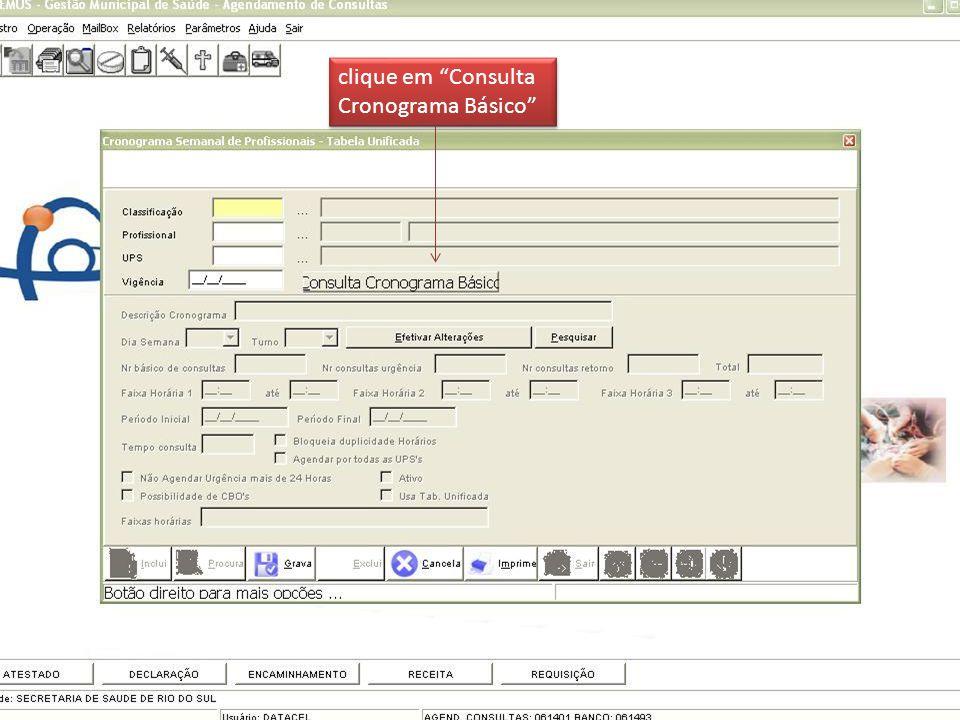 clique em Consulta Cronograma Básico