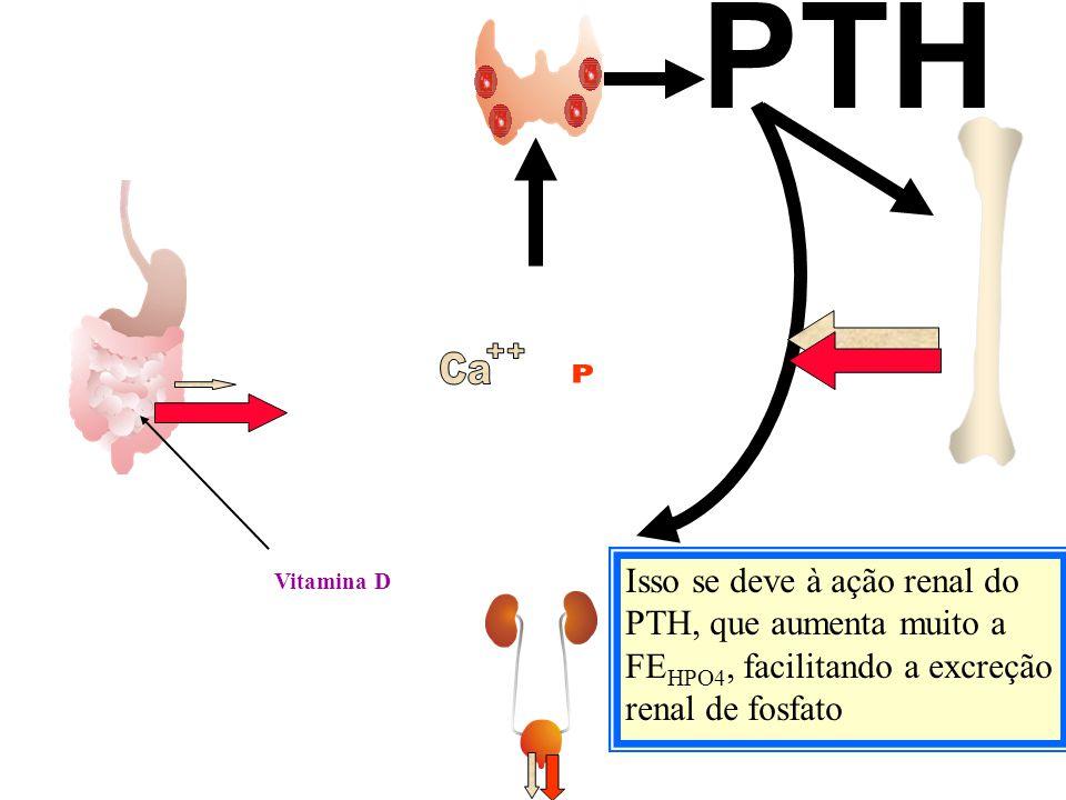Vitamina D PTH Isso se deve à ação renal do PTH, que aumenta muito a FE HPO4, facilitando a excreção renal de fosfato