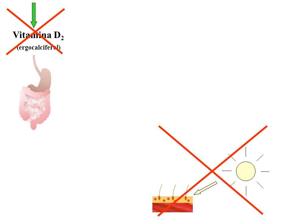 A carência de vitamina D deprime a absorção intestinal de cálcio e tende a baixar a concentração sérica do íon 1,25(OH) 2 -Vit D 3