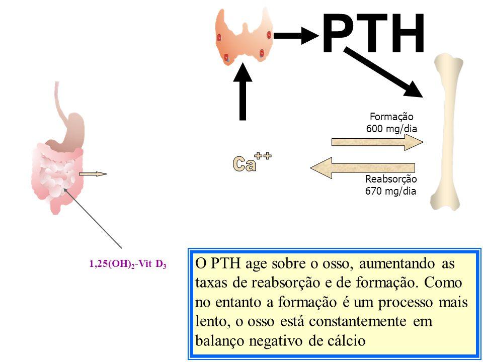 O PTH age sobre o osso, aumentando as taxas de reabsorção e de formação. Como no entanto a formação é um processo mais lento, o osso está constantemen