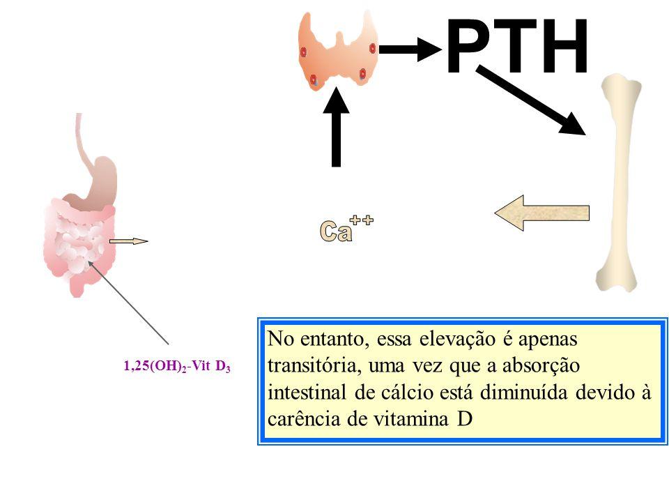 PTH Urina 100 mg/dia Formação 600 mg/dia Como a concentração de cálcio continua baixa, o estímulo às paratiróides persiste...
