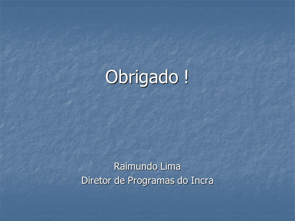 Obrigado ! Raimundo Lima Diretor de Programas do Incra
