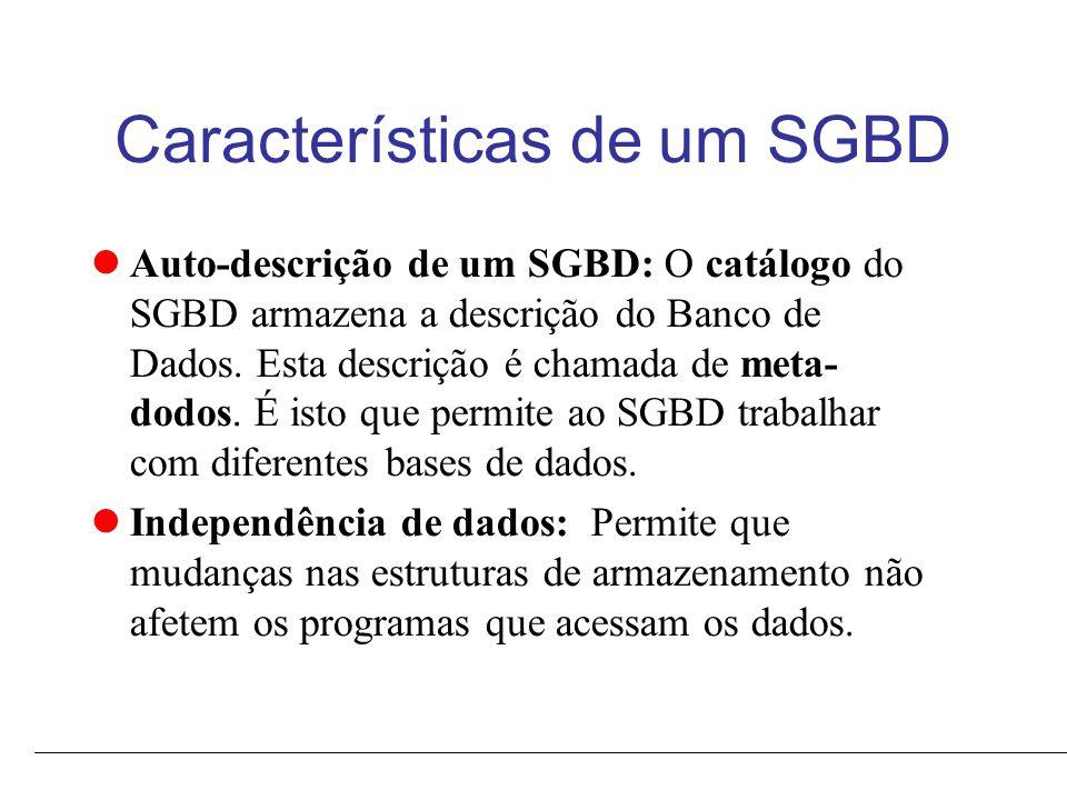 Características de um SGBD Abstração de Dados: O SGBD usa um modelo de dados que esconde detalhes de armazenamento e proporcionam uma visão conceitual dos dados.
