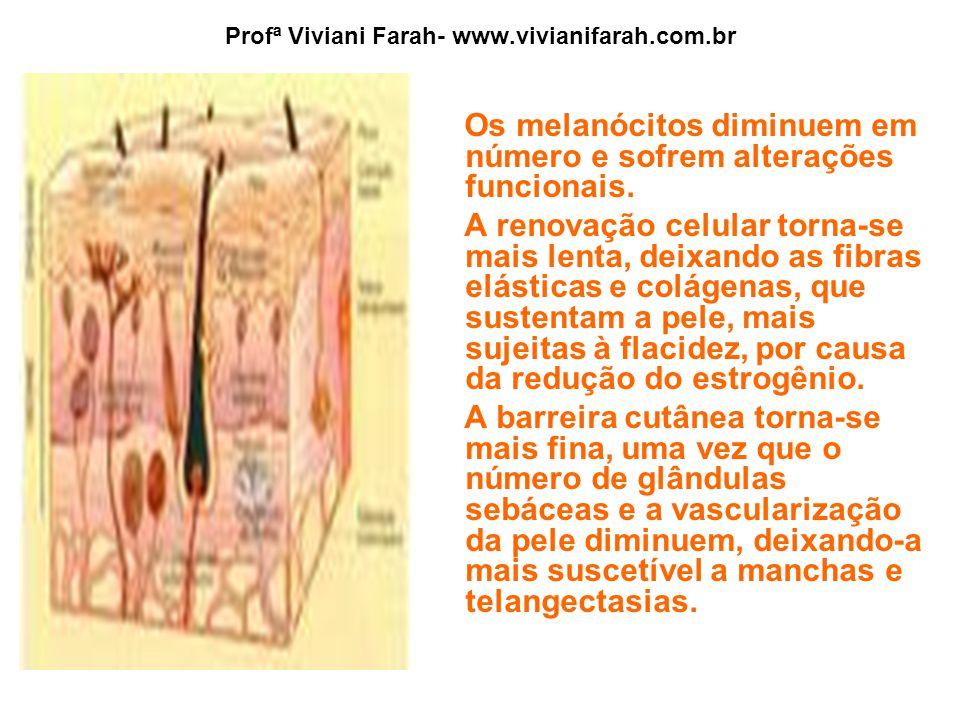 Profª Viviani Farah- www.vivianifarah.com.br Os melanócitos diminuem em número e sofrem alterações funcionais. A renovação celular torna-se mais lenta