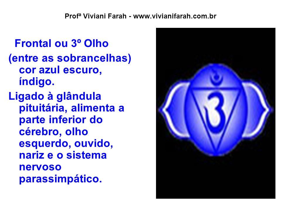 Profª Viviani Farah - www.vivianifarah.com.br Frontal ou 3º Olho (entre as sobrancelhas) cor azul escuro, índigo. Ligado à glândula pituitária, alimen